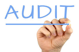 Hand writing the word audit